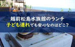 越前松島水族館 ランチ