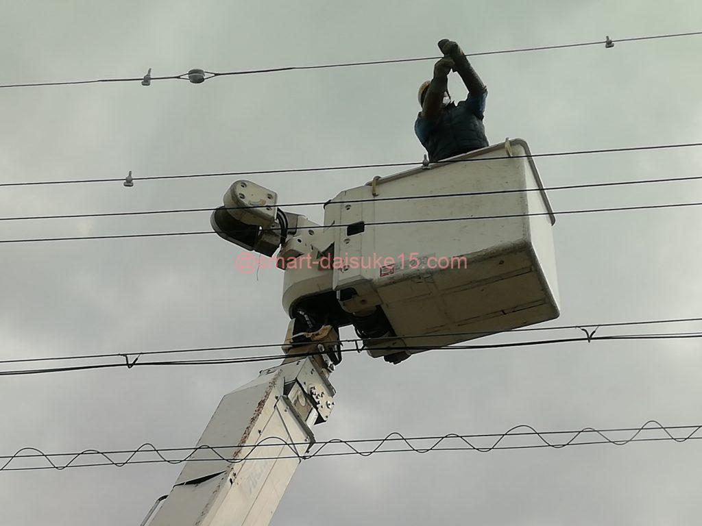 電線鳥よけ対策
