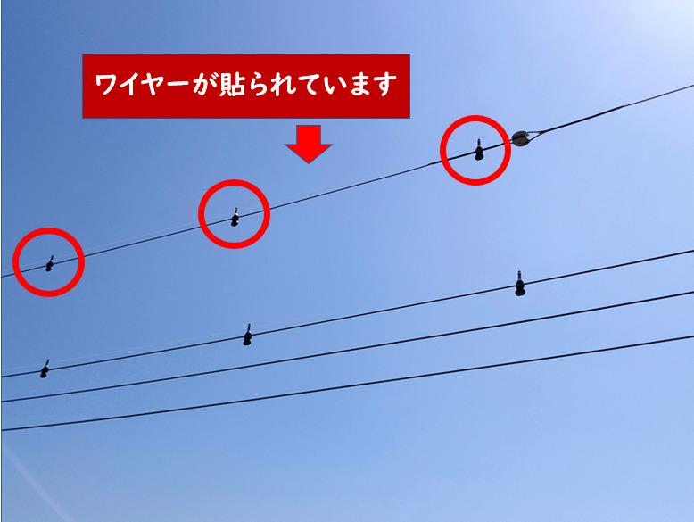 電柱鳥よけ対策ワイヤー